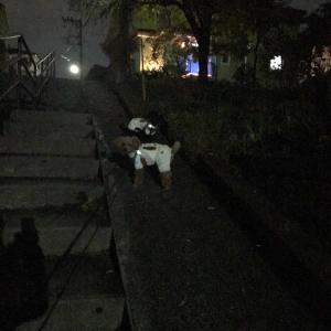 暗闇の散歩