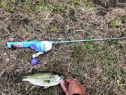 おもちゃ竿でも釣れる 2019.7.20 瀬田川 バス釣り