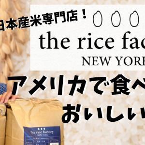 【The rice factory New York】アメリカで食べれるめっちゃおいしいお米!