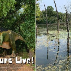 お子様大好きスポット!Dinosaurs Live!