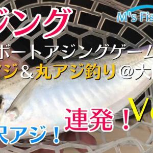尺オーバーの大アジ連発!アジングで大鯵釣り~マアジとマルアジの違いもご紹介@大阪湾 Seamaster を公開しました。