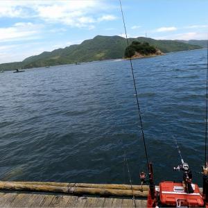 大型筏で鯵のサビキ釣り&フカセ釣り&海上BBQも楽しめます♪@徳島県 鳴門 ウチノ海 細川渡船さん