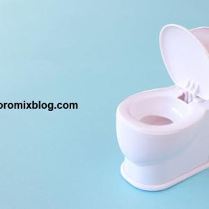 トイレトレーニング…どうしてもうんちはオムツでしたかった理由と成功した「トイレでうんち作戦!」