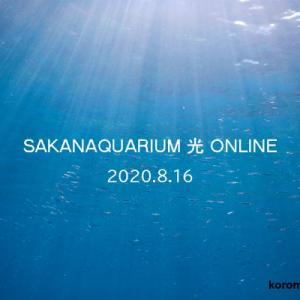 サカナクション オンラインライブ SAKANAQUARIUM 光 ONLINE 2020年8月16日 感想・セトリ・ネタバレあり