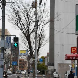 お食事処 ゆき (高松市番町)