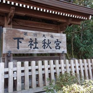 長野県にて諏訪大社とカインズホーム