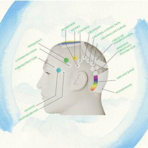 脳のデトックス、アクセス・バーズとは何か?
