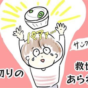 【レビュー】みじん切りチョッパーで時短&離乳食作り!【試し切り写真あり】
