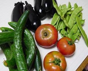 夏野菜がいっぱい!!