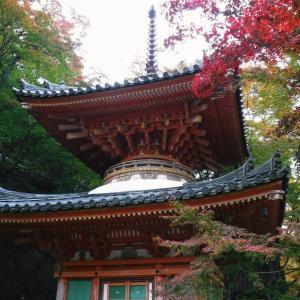 和泉葛城山登山(前編)牛滝山 大威徳寺で紅葉と渓流・滝を観賞