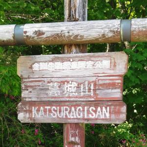 大阪と和歌山の県境 ブナ林が有名な和泉葛城山へのアクセス・登山ルート