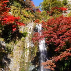 箕面山へのアクセス・ハイキングコース 箕面大滝・勝尾寺は紅葉の名所
