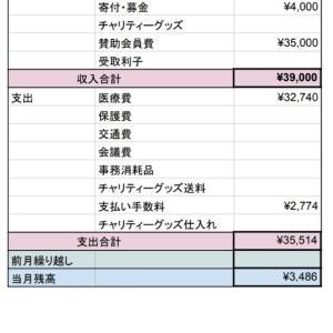 11月 会計報告