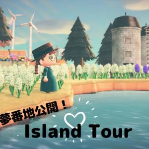 【あつ森】島紹介&夢番地公開の動画を公開しました