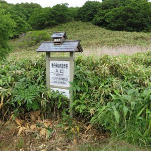 北海道 積丹半島 島武意海岸