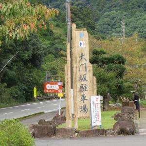 熊野古道大門坂ルートで熊野那智大社に