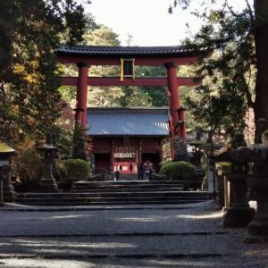 厳かなる杉並木【北口本宮冨士浅間神社①】