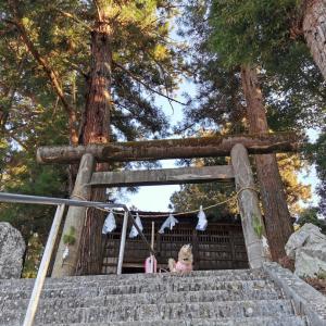 佐野川の御石杜【石楯尾神社】