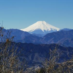山頂と富士山~高尾山2021如月⑤