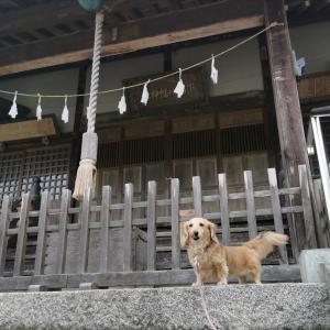 下山八幡神社(青梅市梅郷)