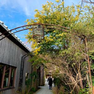 mokichi〜茅ヶ崎で酒造が営む古民家Cafe〜