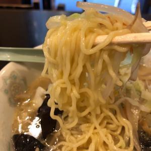 【浅草】博雅 タンメンと餃子