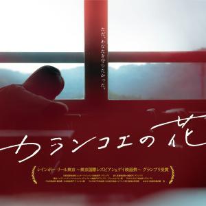 今田美桜主演『カランコエの花』LGBTに触れた高校生たちがぶつかる想い