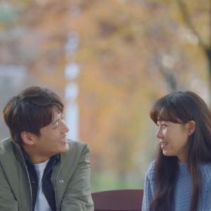 愛の不時着越え『椿の花咲く頃』韓国ドラマの歴史に残る名作のあらすじ、キャストは?
