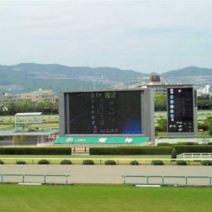 阪神競馬場 全12レースから1馬ずつ予想してみた[前編]