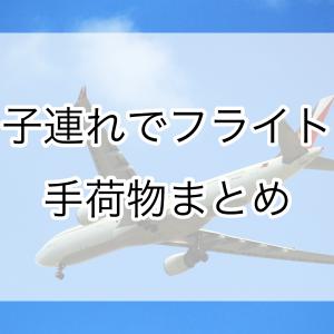 子連れでフライト「手荷物」なるべく楽に過ごすための荷物の分け方!