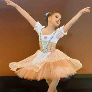 バレエレッスンねえさんのバレエ意欲の再び危機か