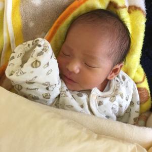 赤ちゃんはベストなタイミングで生まれてくる。