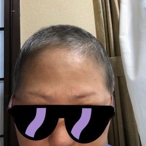 抗がん剤終了から6ヶ月の頭。