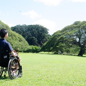 【勇気が出る物語】車椅子YouTuber(中村 珍晴)さんの、アメフト大事故からのパワフルな復活劇