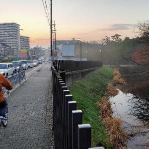 ♪雨上がりの朝〜♪