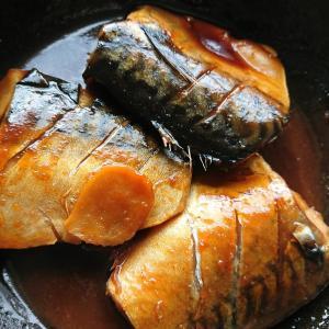 脱シャバシャバ!15分で作るサバの味噌煮レシピ