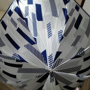 傘を購入してみたけれど・・・
