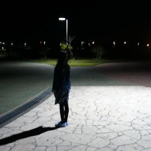 夜の散歩をするときに気をつけたいこと
