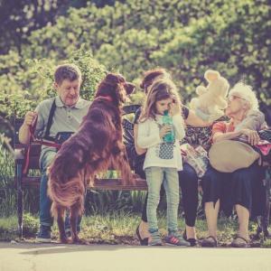 犬を飼う前に考えること10選【飼ってから後悔しては遅いのです】