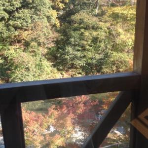 丹沢 中川温泉ブナの湯