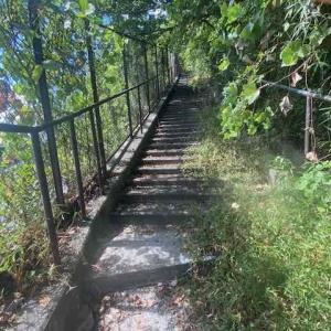 階段マニア