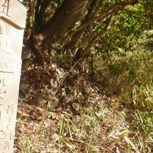 第61話 84番・屋島寺~85番・八栗寺へ行く もう一つの遍路道①(木の下に椅子がある所から山沿いに、八栗寺さんへ向かう道)