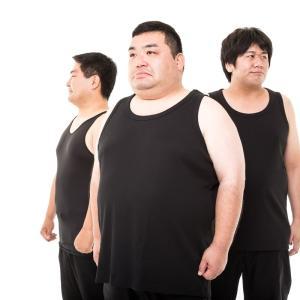 太ったら困ったこと良かったこと一覧~80kgオーバー編~