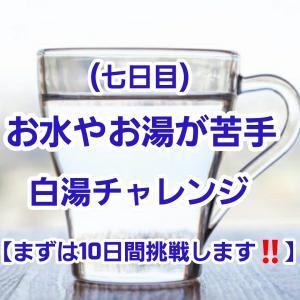 【10日間白湯チャレンジ】7日目