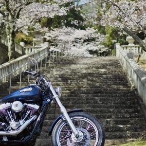 ②龍野 うすくち醤油ツーリングその2 播磨の小京都 龍野城下町を散策