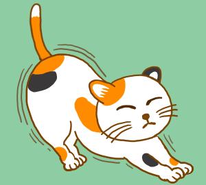 猫探し ブリーダー編