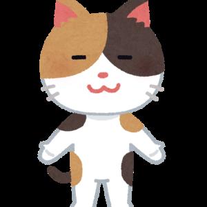 【可愛い!?】世界三大猫珍種集