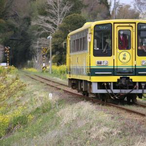2020年、大晦日の小湊鐵道撮影記(6)2020年最後の撮影は...