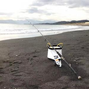 【釣行記】冬の平塚海岸/ひらつかビーチパーク下で投げ釣り 落ちギスはもう居ない?