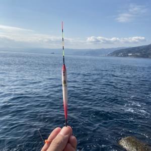 【釣行記】神奈川/真鶴半島・福浦漁港のライトなフカセ釣り 爆寄せグレ編
